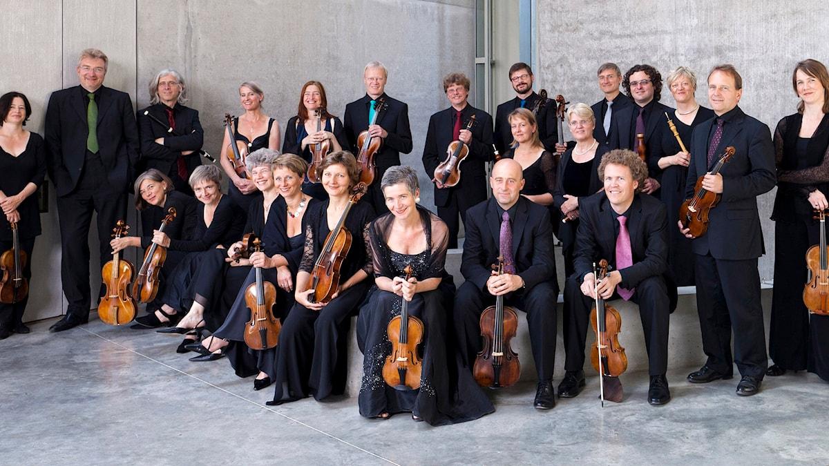 Freiburgs barockorkester. Pressbild/Marco Borggreve