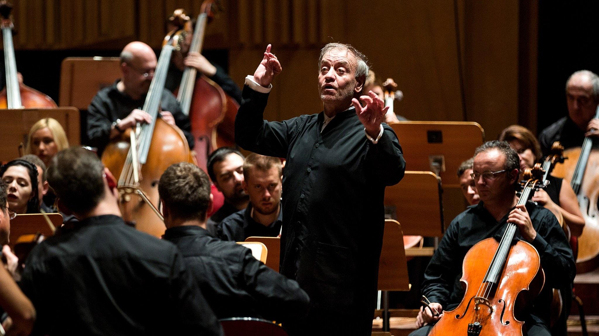 Valery Gergiev dirigerar Nötknäpparen. Foto: Mattias Ahlm/Sveriges Radio
