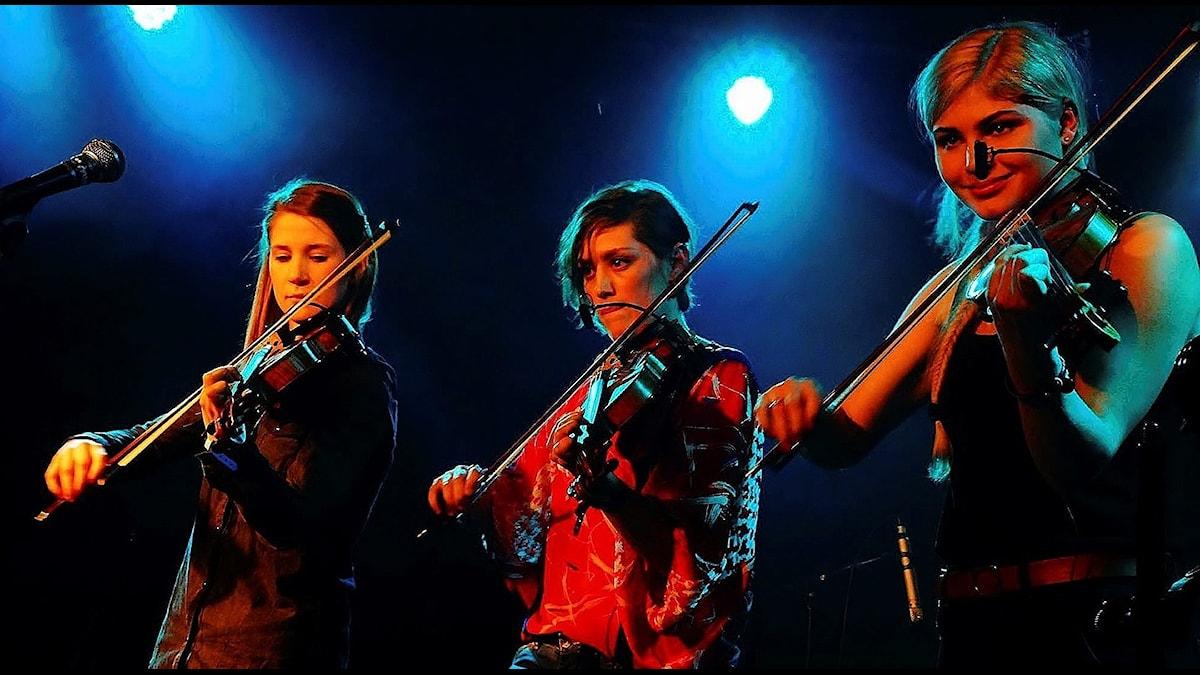 Fioltrion Anna Karlsson, Johanna Nolgård och Anna Rubinsztein på scen under Korrö Folkmusikfestival