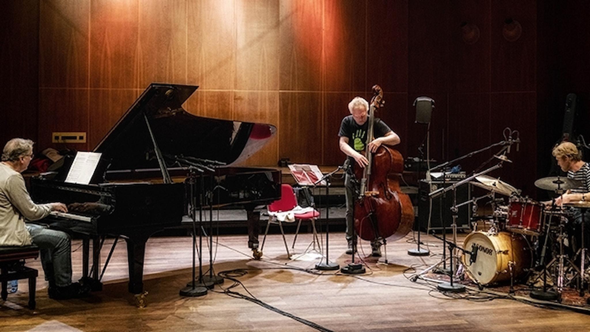 Bobo Stenson Trio.