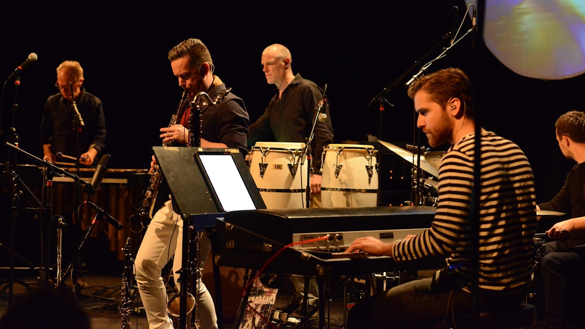 Bild: Soundscape Orchestra.
