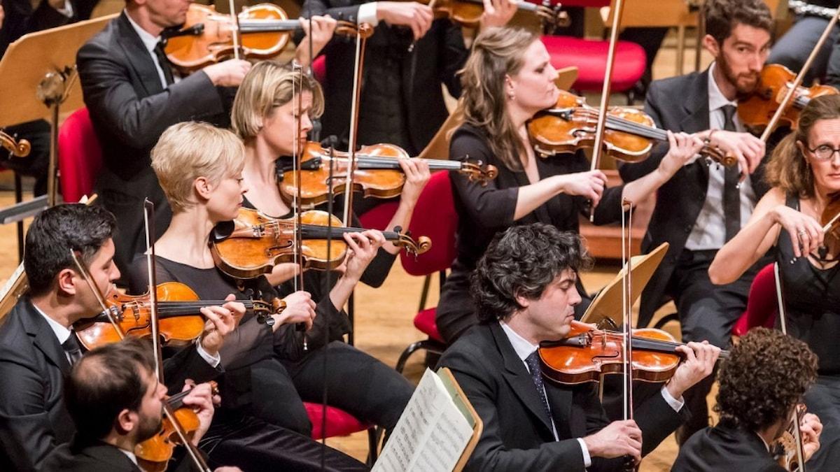 Bild: Orchestra Mozart.