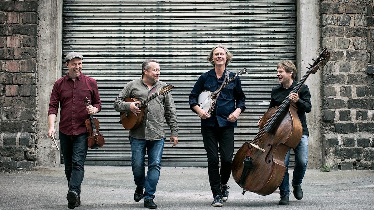 Det svenska bandet Quilty, specialister på irländsk folkmusik.