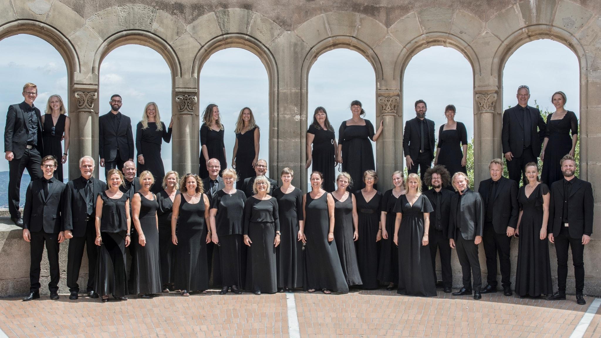 KONSERT: Vocal Art Ensemble 40-årsjubilerar