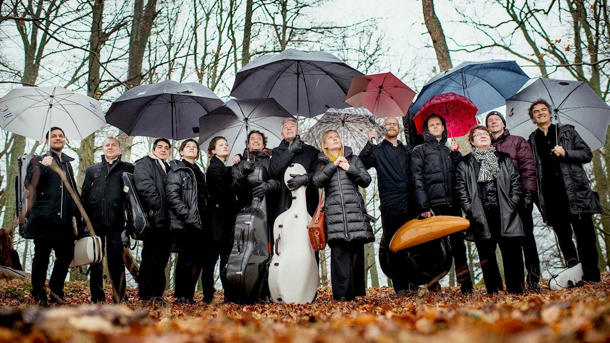 Bild på orkestern Musica vitae.