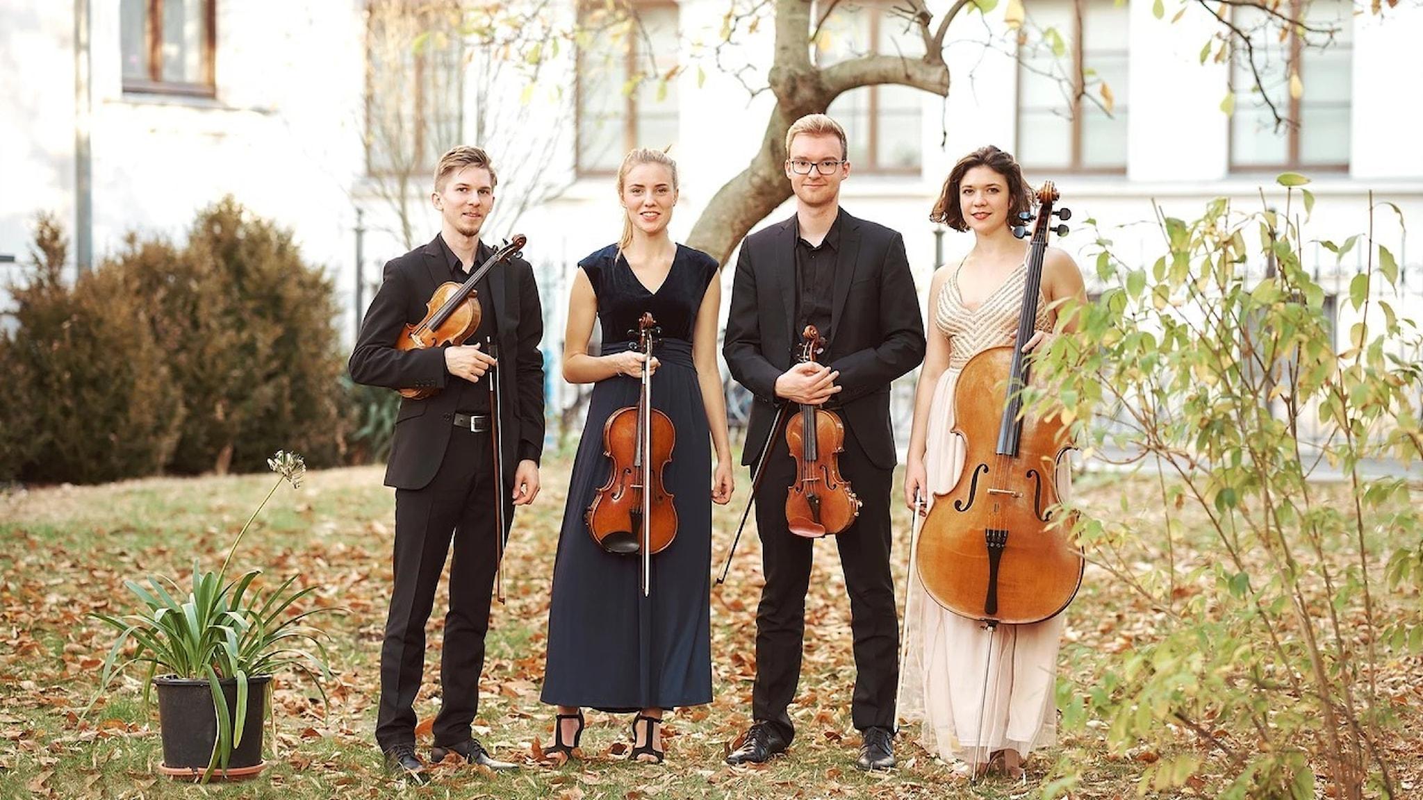 Bild: Gyldfeldtkvartetten.