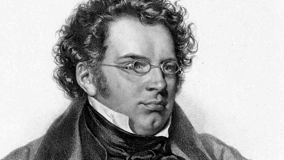Bild: Franz Schubert.