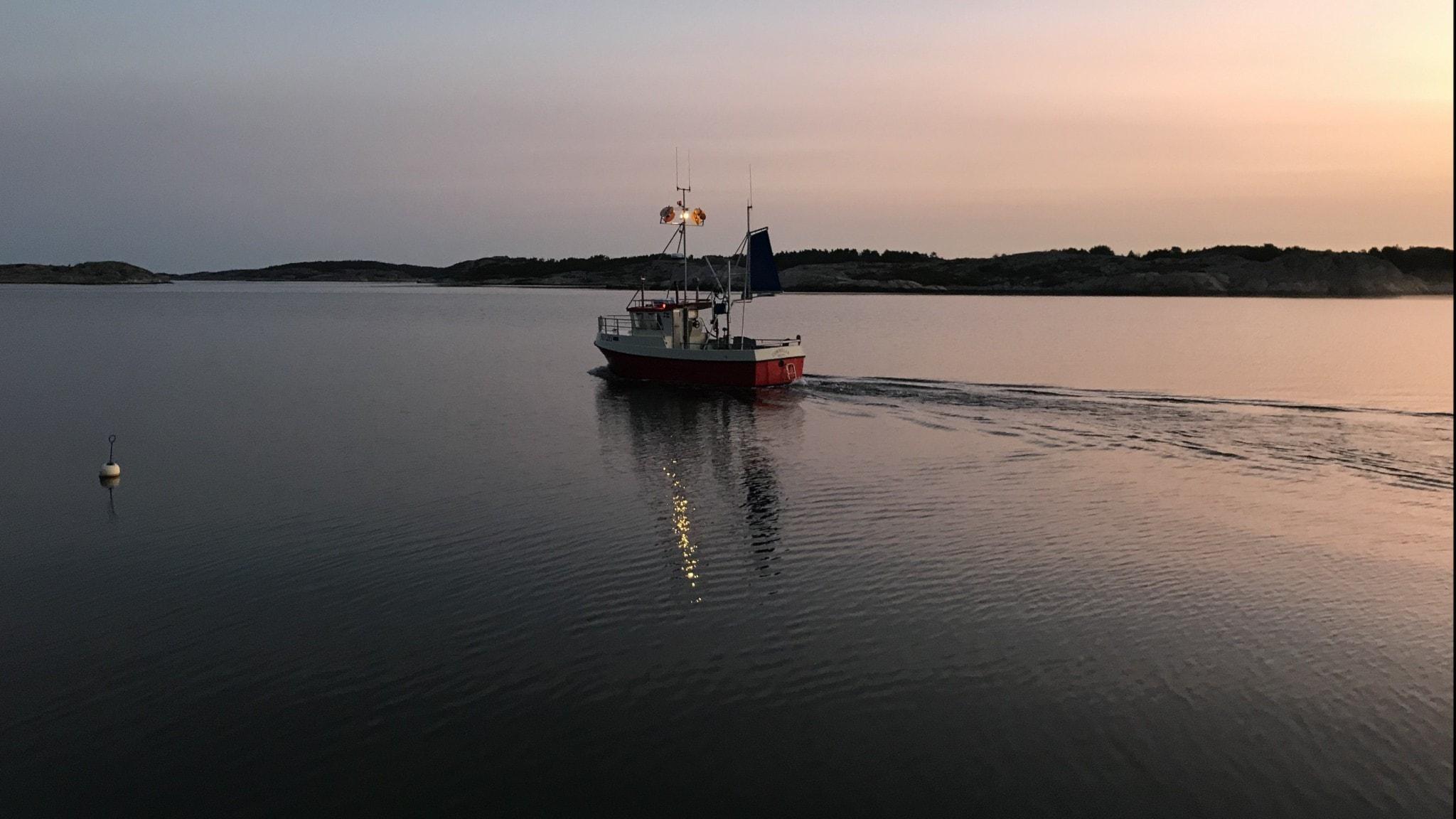 liten fiskebåt på lugnt hav