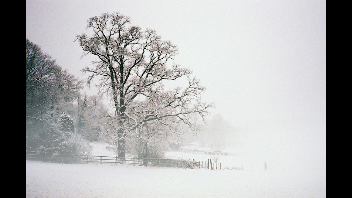 Vinter Foto: Nick Page Flickr Creative Commons