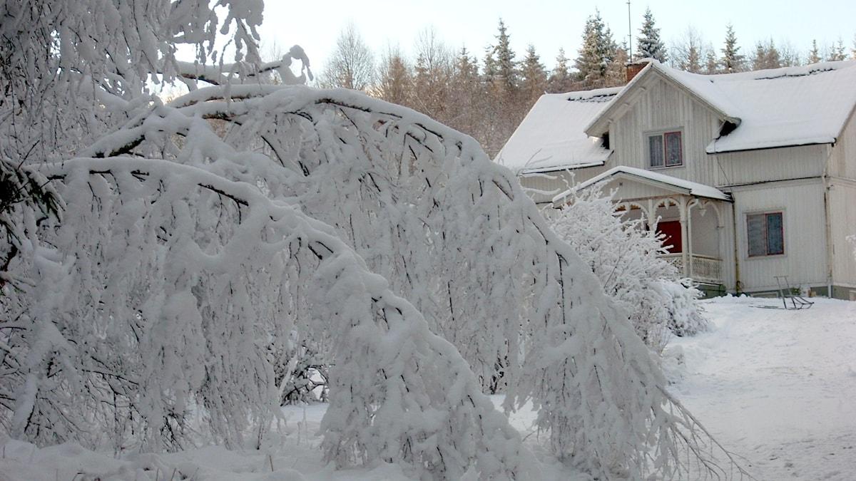 En frusen luddfilt av snö i Malfall, Värmland.