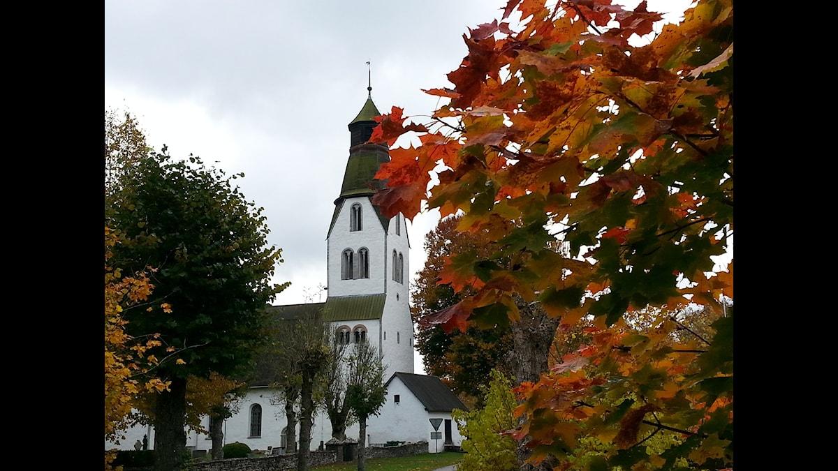Lye kyrka, Gotland. Foto: Eva Sjöstrand/SR