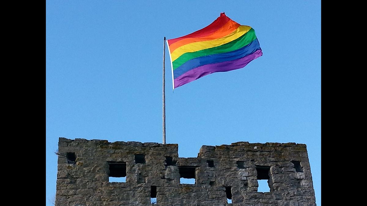 Regnbågsflaggning på Visby ringmur. Foto:Eva Sjöstrand/SR