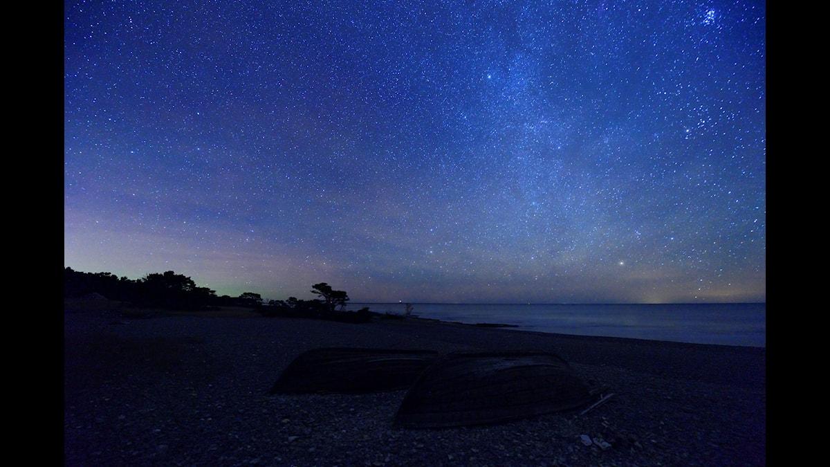 Stjärnhimmel och norrsken vid Gotlands ostkust. Foto: Magnus Martinsson