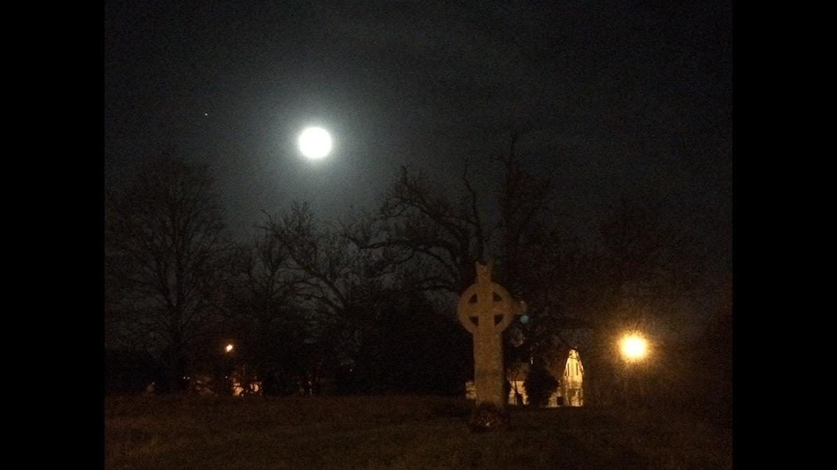 Flödande månsken över Korsbetningen i Visby.