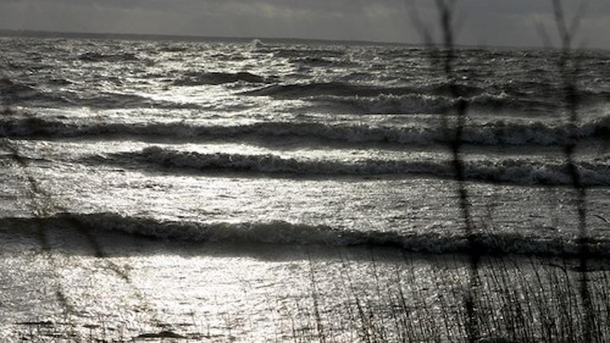 Vågor i Kalmarsund