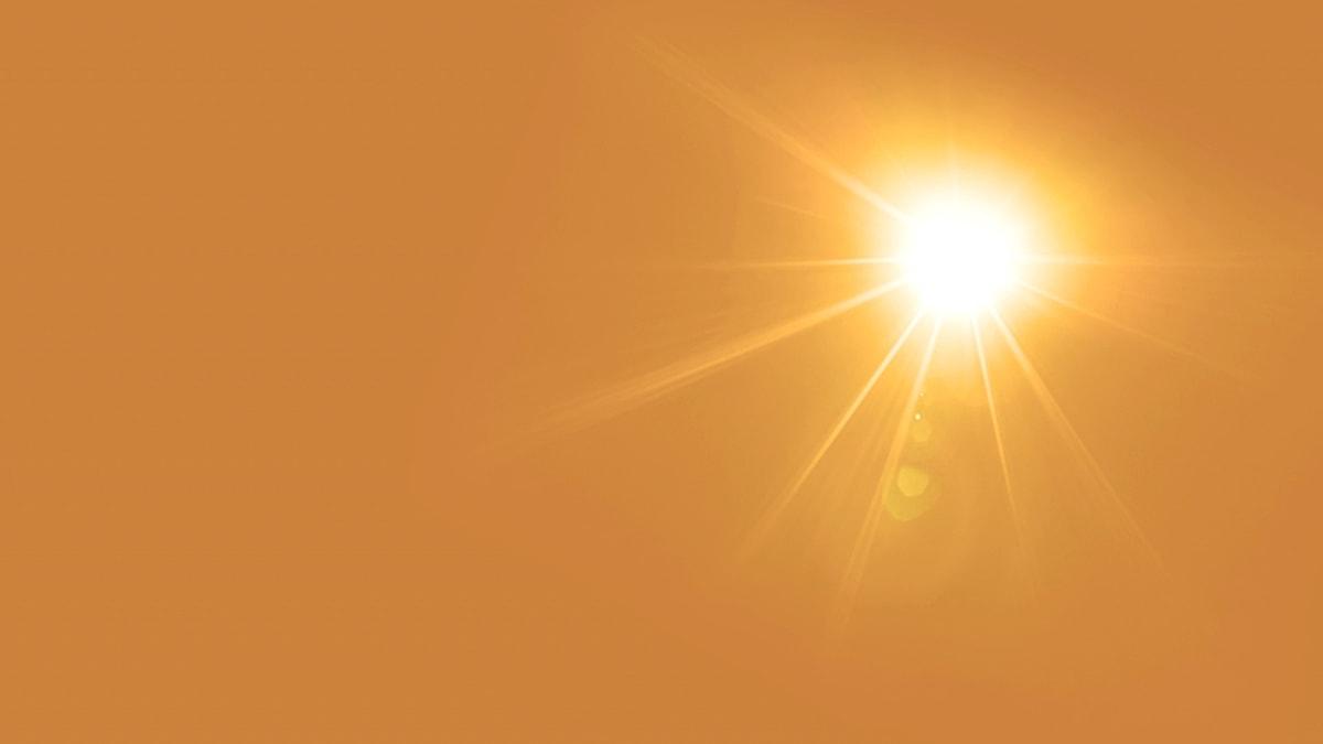 Bild på solsken.