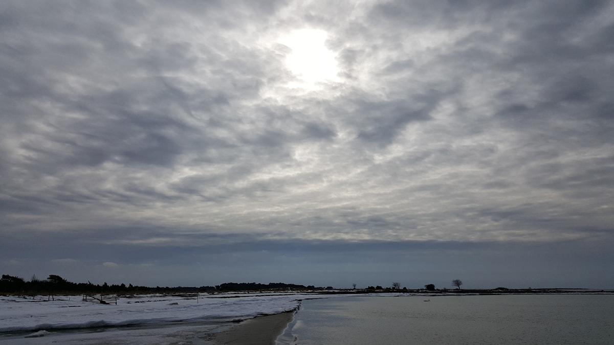 Vårljus över en gotländsk strand