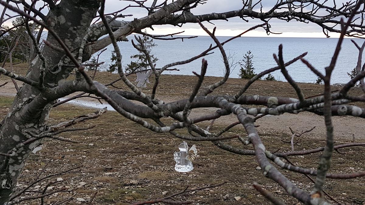 En ängel på en vinterkal gren vid Södra Hällarna i Visby.
