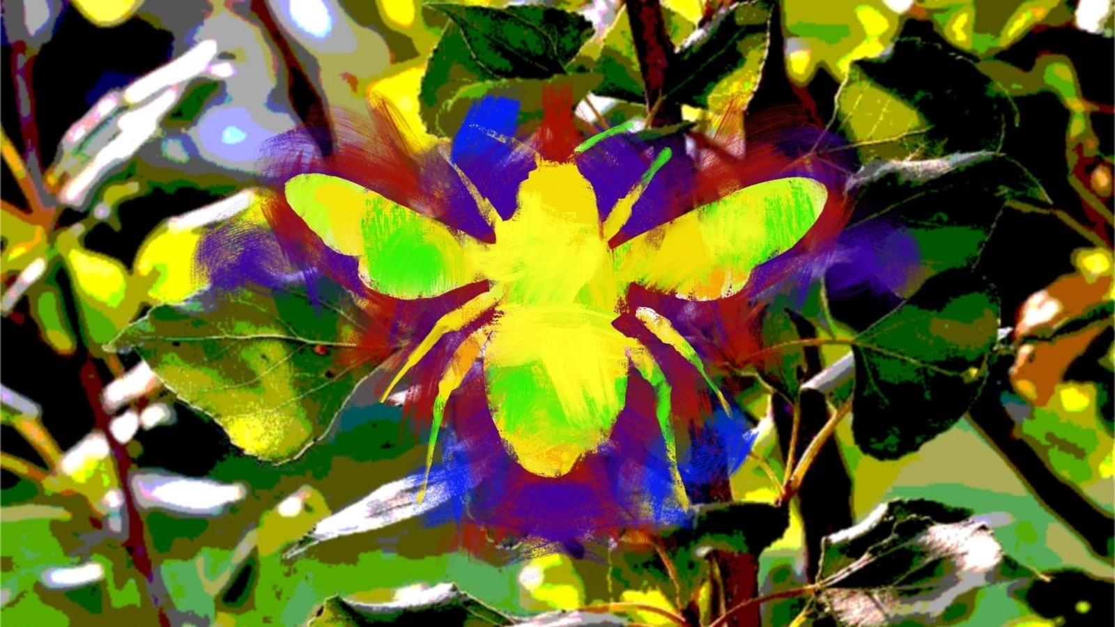 Bland blommor och bin