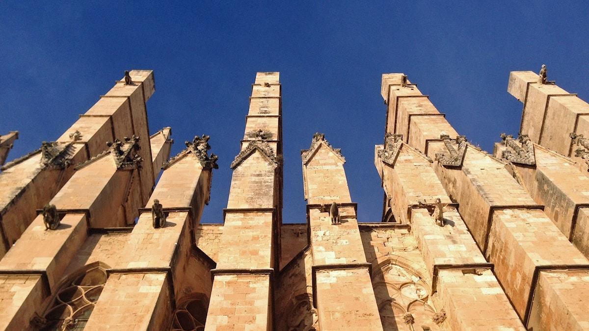 Katedralen i Palma de Mallorca. Foto: Per Feltzin/Sveriges Radio