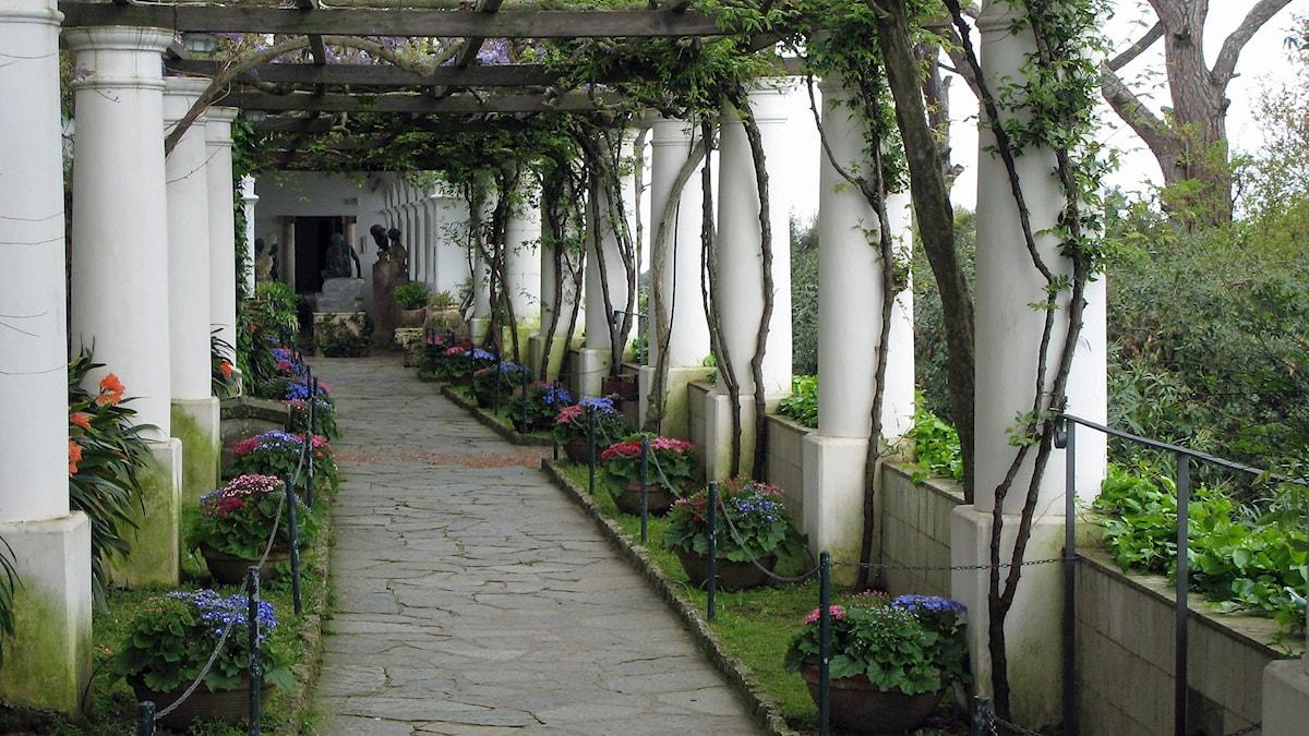 San Micheles trädgård, Capri