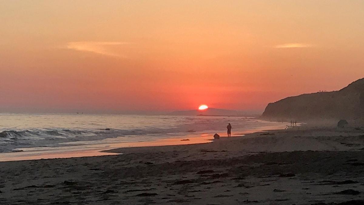 Solnedgång i Crystal Cove Beach, CA.