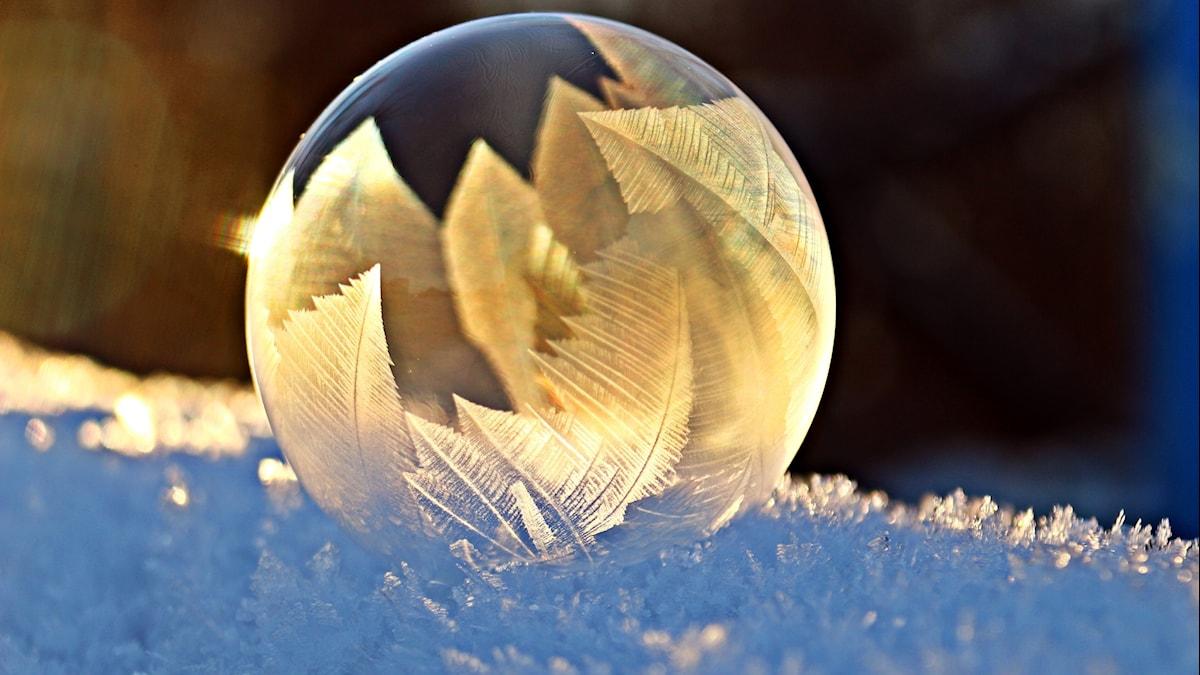 En vinterbubbla