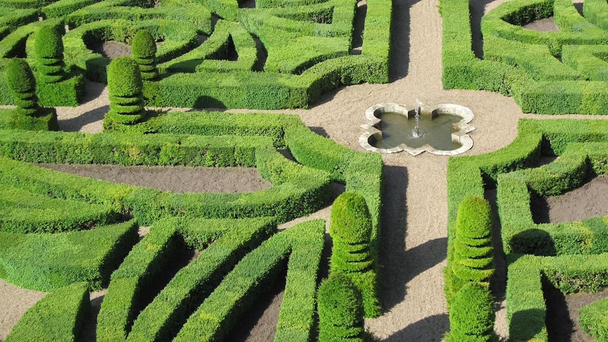 Slottsträdgården i Villandry, Loiredalen