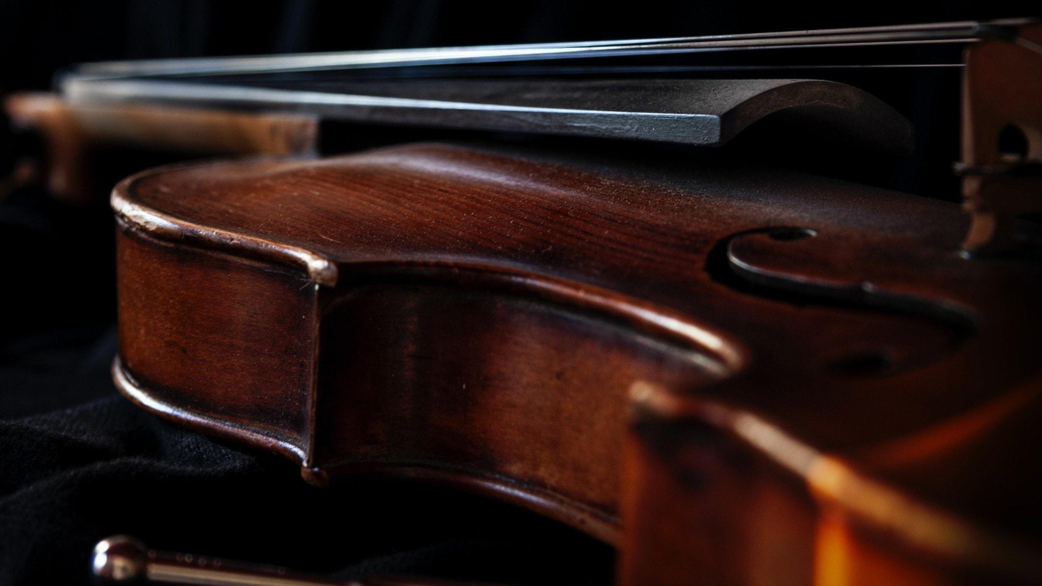 Närbild på violin - mörk bild.