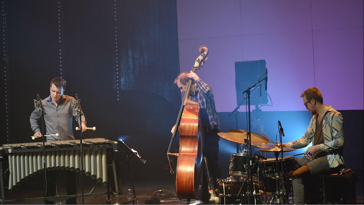 Herd Trio vid 12 points festival 2014. Foto Kjell Oscarsson/SR