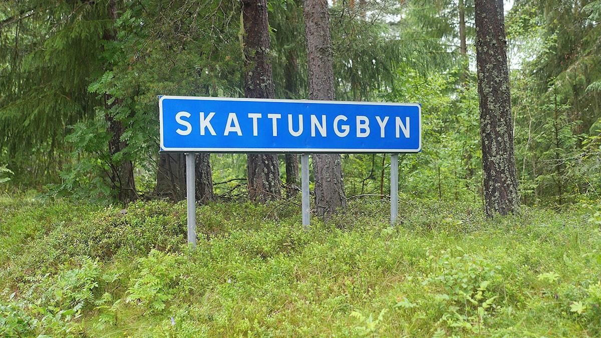 Bild på ortsskylt Skattungbyn