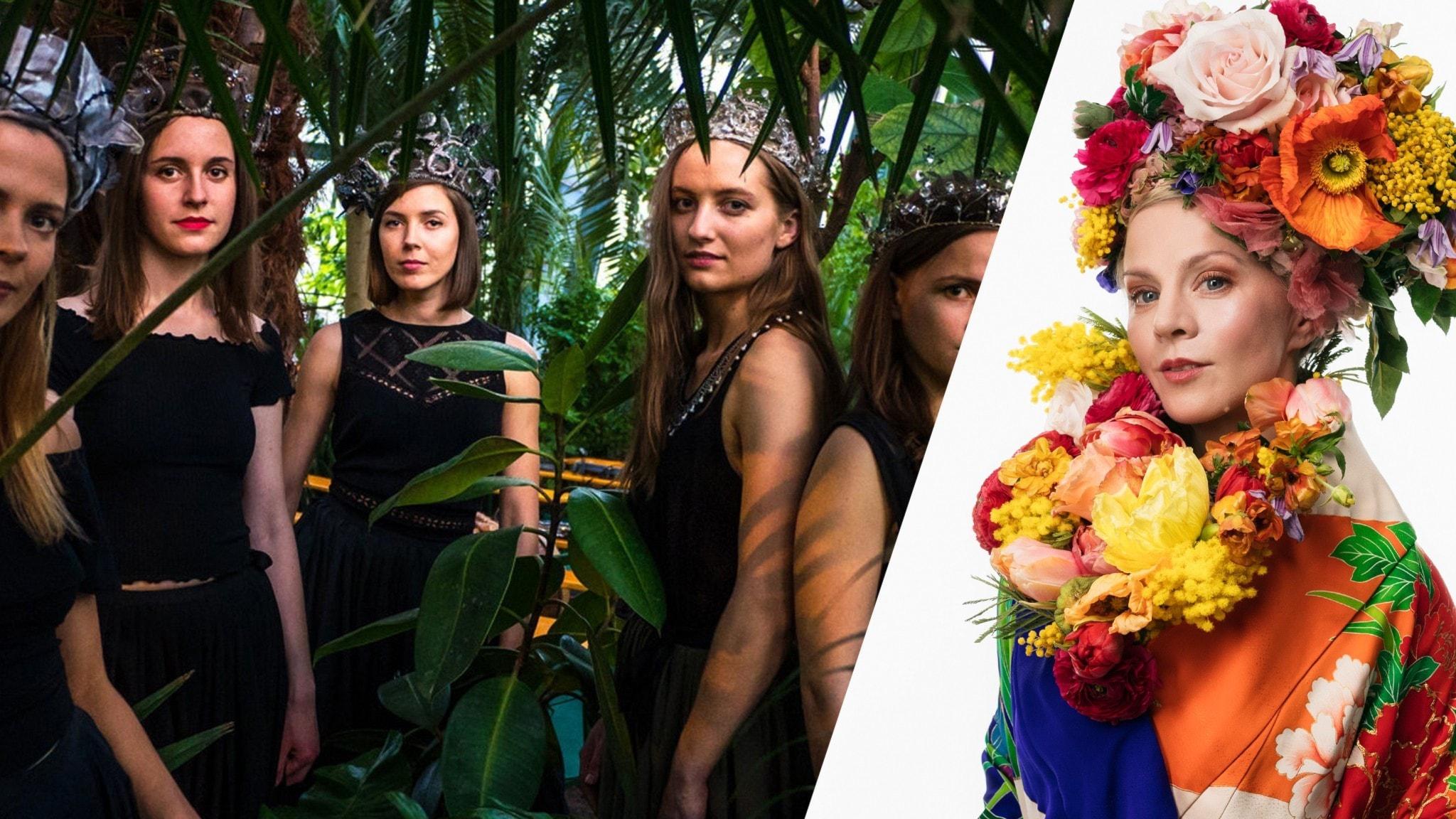 Veckans favoriter: Från lettiska folkbandet Tautumeitas till brasilianska singer/songwriters