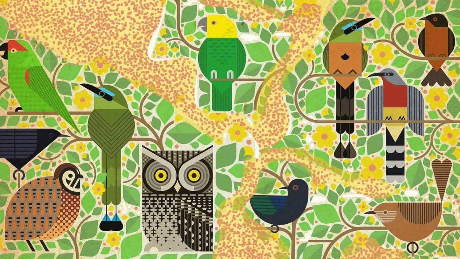 MIXTEJP: Fågelsång och folktronica från hela världen