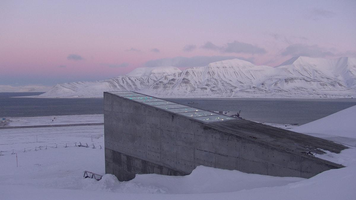 Domedagsvalvet på Svalbard