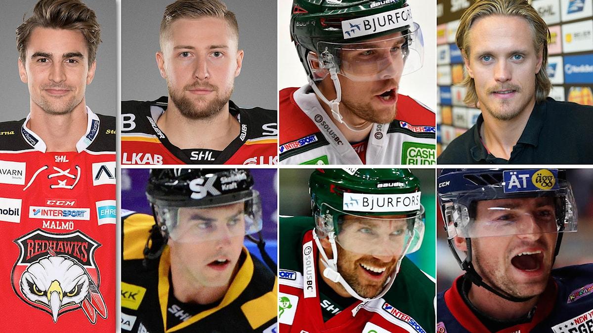 Nils Andersson, Joel Lassinantti, Henrik Tömmernes, Magnus Nygren, Joakim Lindström, Joel Lundqvist och Broc Little.