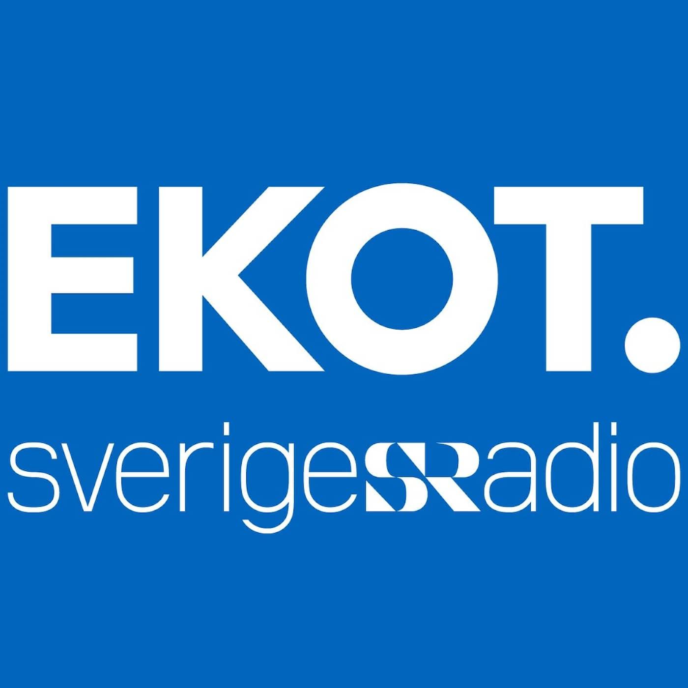 Dagens Eko: sammanfattning av dagens nyheter 2021-05-18 kl. 16.45