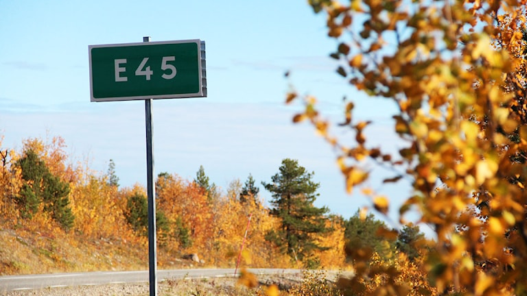 Europaväg 45. Foto: Helene Alm/SR.
