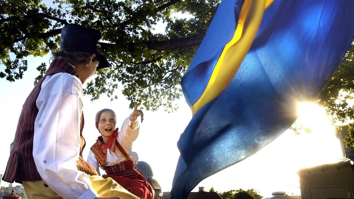Skansen på nationaldagen. Foto: Tomas Oneborg/TT