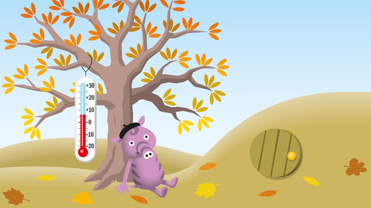Temperatur - Radioapans väderlekar