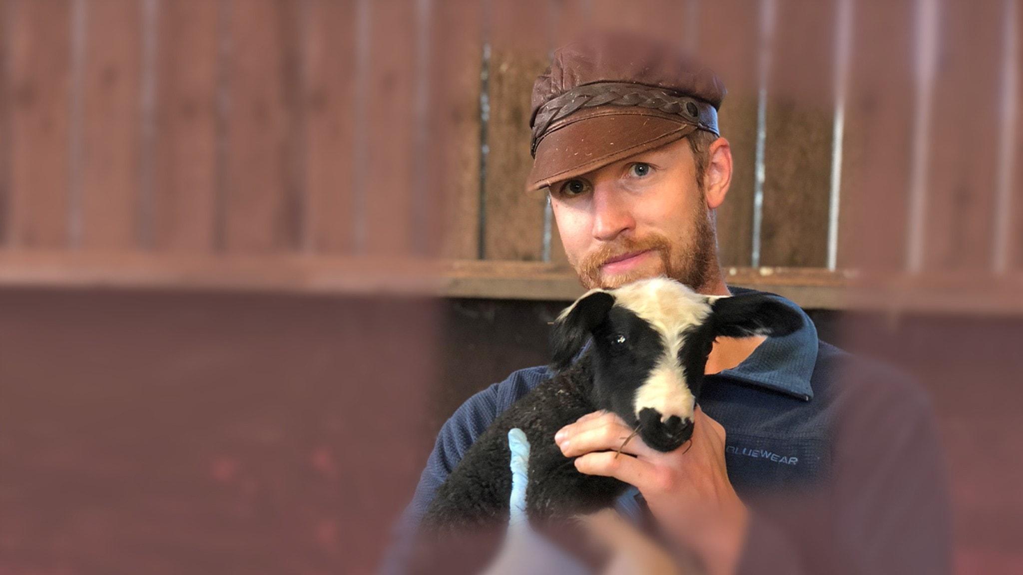 Christoffer Lindahl med ett lamm i famnen
