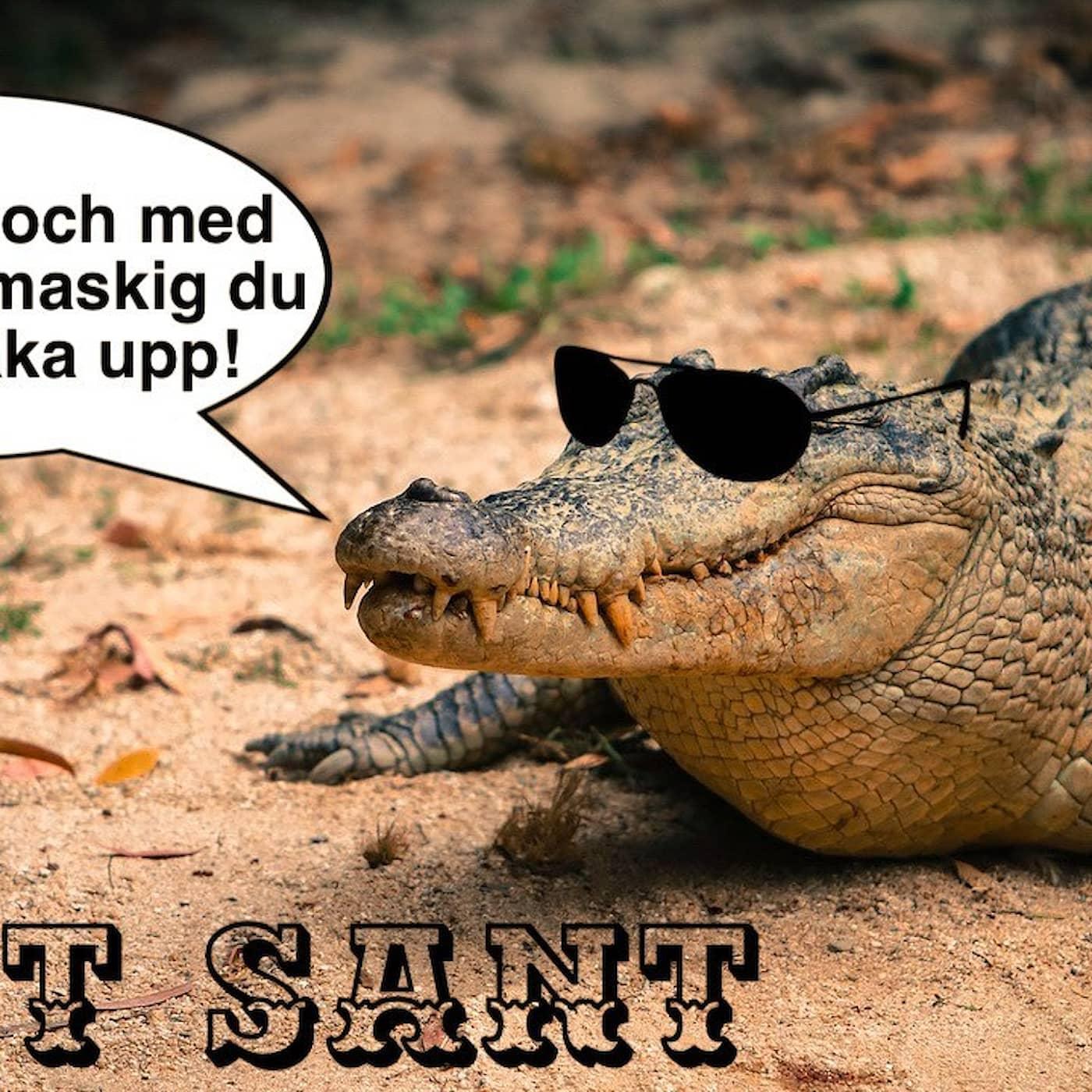 Smart mat och coola krokodilöron!