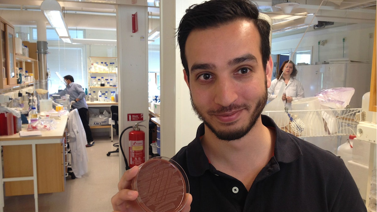 Farshid Jalalvand. (Foto: Lena Nordlund/Sveriges Radio)