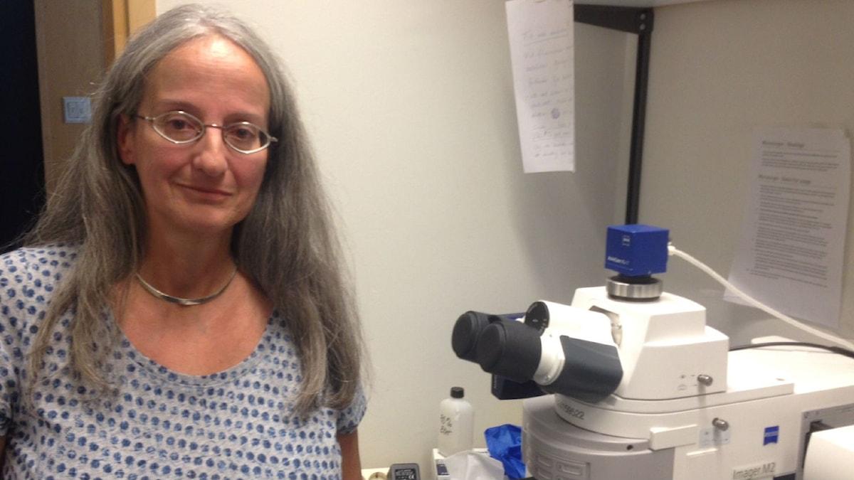 Maria Thereza Perez älskar att titta på synceller. Foto: Lena Nordlund/Sveriges Radio
