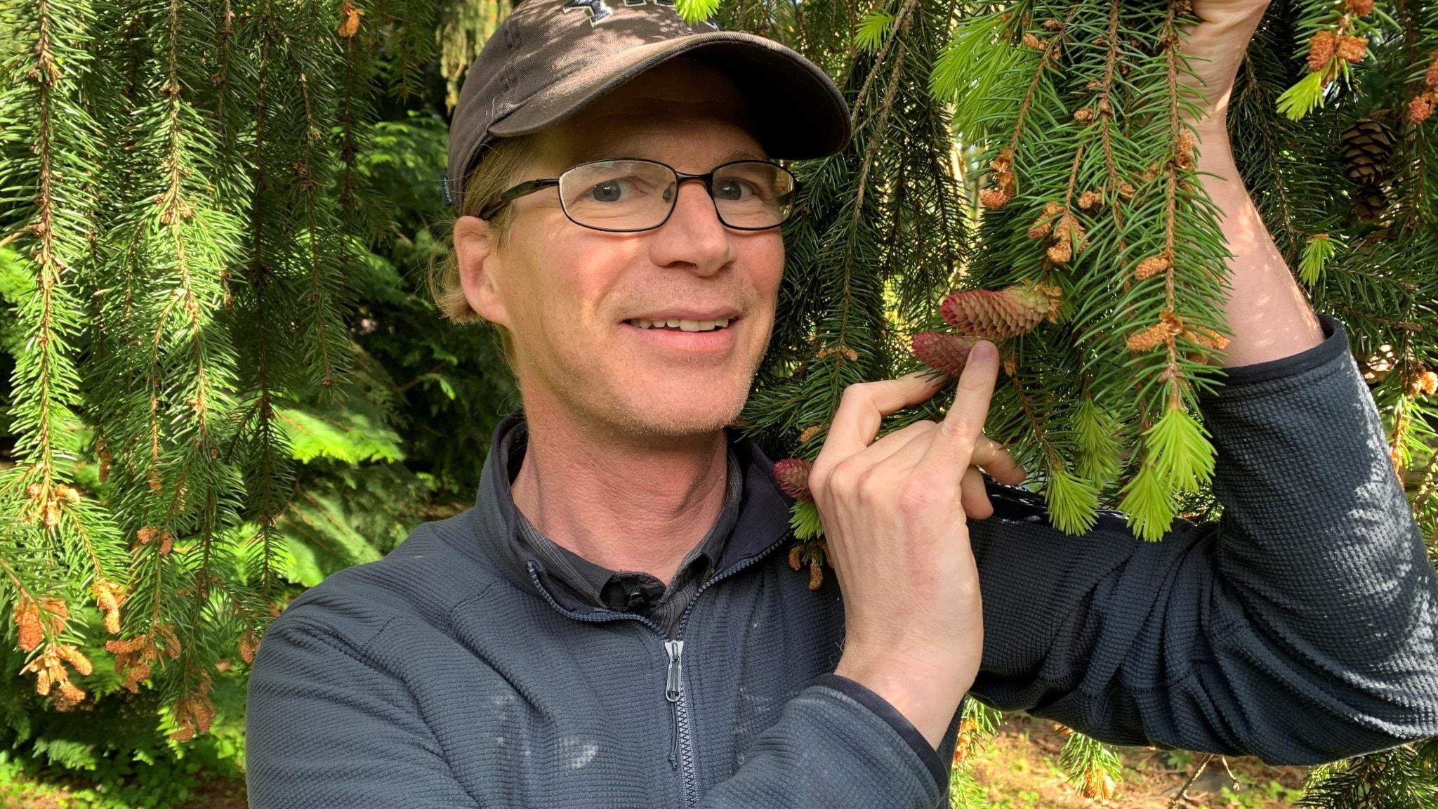Jens Sundström är docent i växtfysiologi på Sveriges lantbruksuniversitet, SLU.