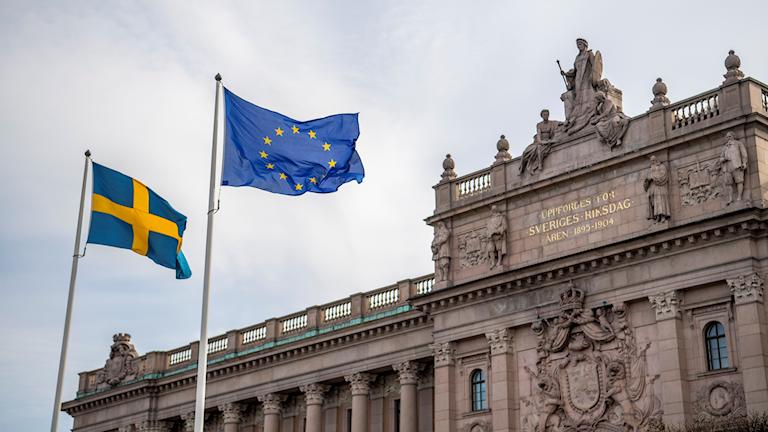 EU-FLAGGA. Foto:Henrik Montgomery/TT