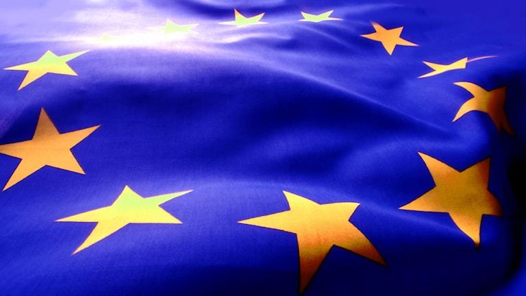 EU-flagga. Foto: SVT-bild