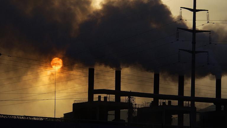 EU-valet: Hur vill toppkandidater skärpa EU:s klimatmål?