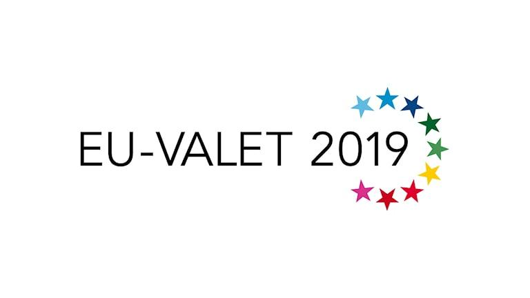 Programbild för EU-valet 2019