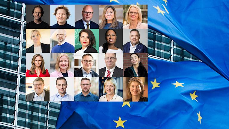 Här är politikerna som Sverige skickar till Bryssel