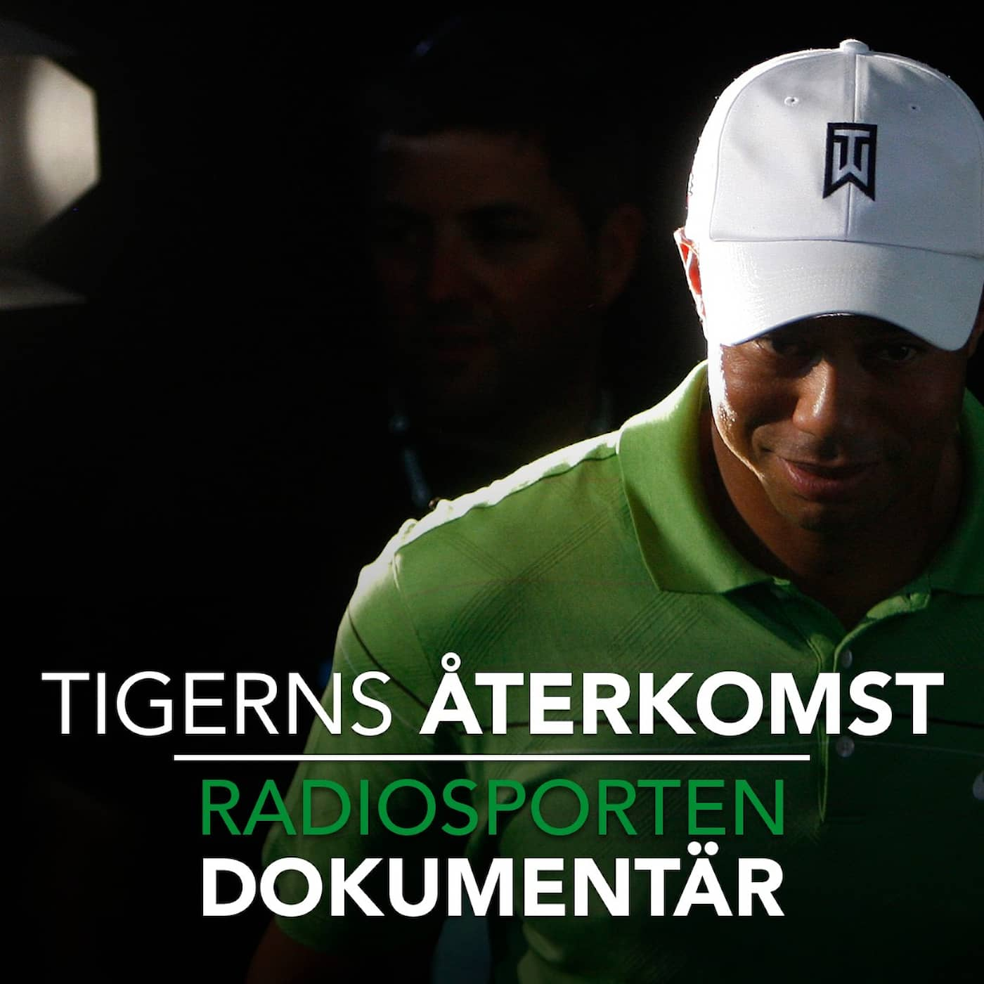 Tigerns återkomst